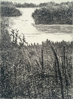 "Marshlands, Jamaica Bay, etching, 8 x 6"", 2000"