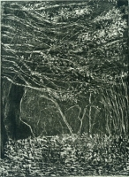 "Rambles, Central Park, etching, 8 x 6"", 2000"