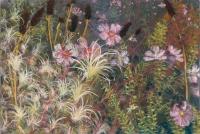 "New York Botanical Garden, pastel, 15 x 22 1/4"", 2016"