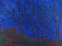 "Ellis Hollow Night II, oil on panel, 18 x 24"", 2002"