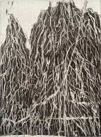 "Weeping Beech, Brooklyn Botanic Garden, etching, 8 x 6"", 2000"